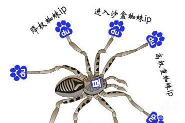 你了解百度搜索引擎爬行蜘蛛各个IP含义嘛?